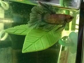 Beta fish Leaf Hammock