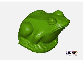 Frog Sculpture 3D Scan