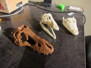 Tarbosaurus skull, sliced for printing