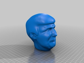 Trump Head