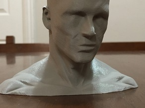 High Poly Low Detail Head