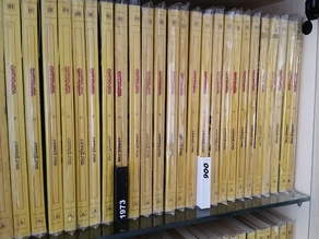Separator tag for bookshelf
