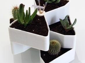 Giardino Rotante per piccole piante grasse