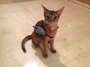 Battle Kitten Ayumi