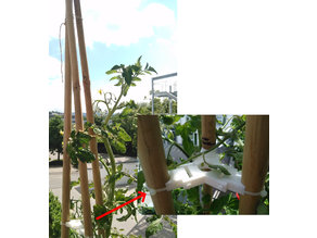 Reinforcement for bamboo climbing aid