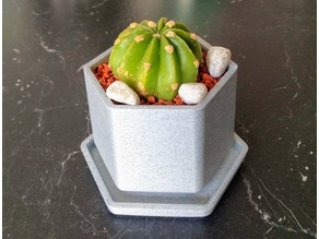 Small Flower Pot with Drip Tray