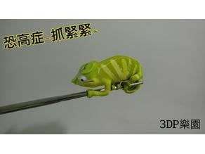 Chameleon (Nylon filament)