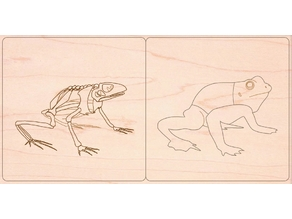 Frog amphibian zoology animal puzzle montessori for laser cut