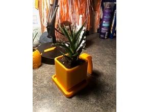 Dorm Room Planter