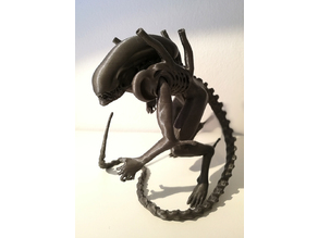 Alien - Xenomorph Warrior  Drone