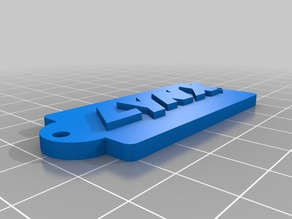 LYNX logo keychain