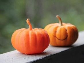 Pumpkin - REAL HIGH RES 3D Scan Halloween