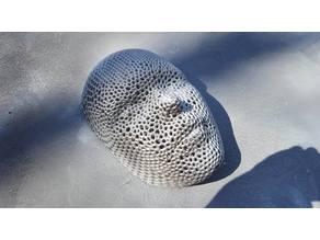 Voronoi style face mask