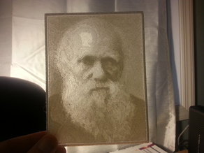 Charles Darwin Lithopane