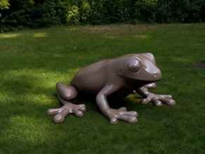 Frog FiXL