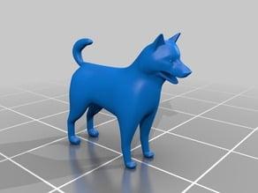 Dogphin