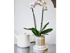 Popsicle pot (Orchid planter)