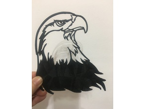 AMERICAN EAGLE wall art /decoration