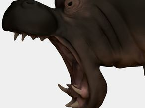 Hippo (made in Zbrush)