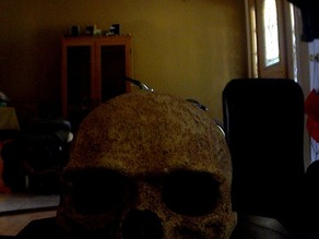 First digitizer scan - Skull