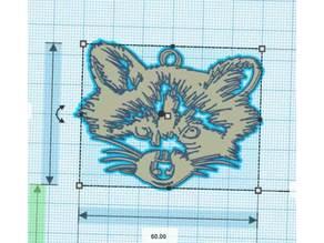 Raccoon - Raton Laveur