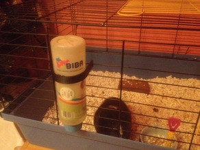 holder for the guinea pig cage