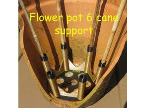 Flower pot x6 cane support