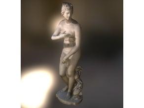 Venus Medici