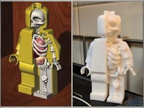 Lego Man Anatomy