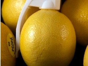 Fruit Grenade