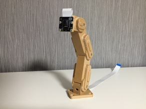 Raspberry Pi Camera Mount