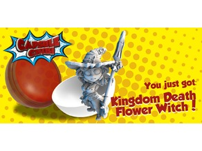 Kingdom Death Flower witch Chibi
