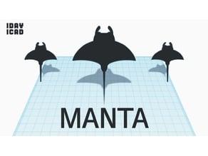 [1DAY_1CAD] MANTA