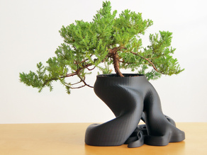 Bonsai Planter (New HD Model with over 1,100,000 Triangles)