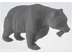 Bear walking with two ribbs (Daniel 7)
