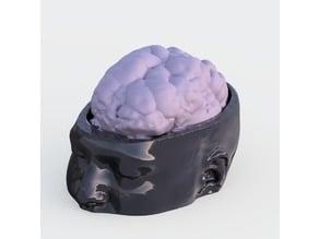Simon's Brain