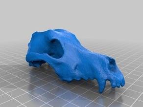Lower Poly Dog Skull I'm Pretending is a Space Wolf Skull for Warhammer 40k