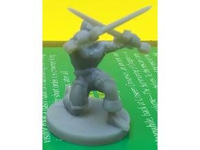 Crossed Sword Trainer