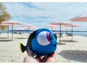 Multi-Color Baby Dory