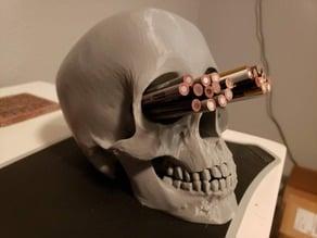 Skull Pen Holder
