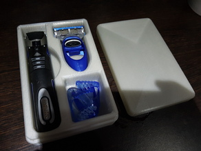 Travel Case for Gillette Proglide Styler