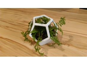 Dodecahedron flower pot