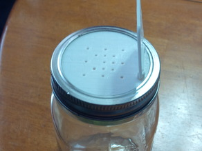 Mason-Jar Salt Shaker