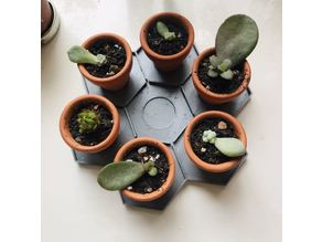 Honeycomb tray for mini planters