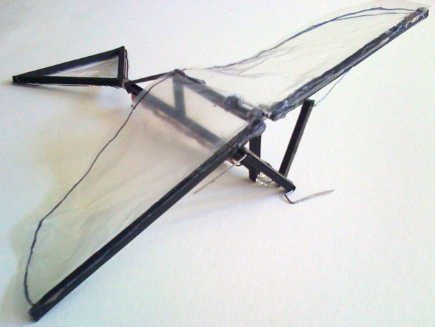 Ornithopter Frame Rubber Band Powered By Bioluminescence