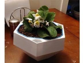 Self Watering Flower Pot