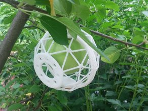 Fruit Cage - Protect a ripening apple