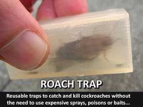 Roach Trap...Reusable trap to catch and kill cockroaches