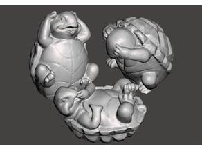 Three Turtles Photogrammetry