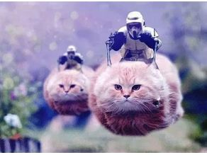 silly cat costume from fortnite star wars amazon